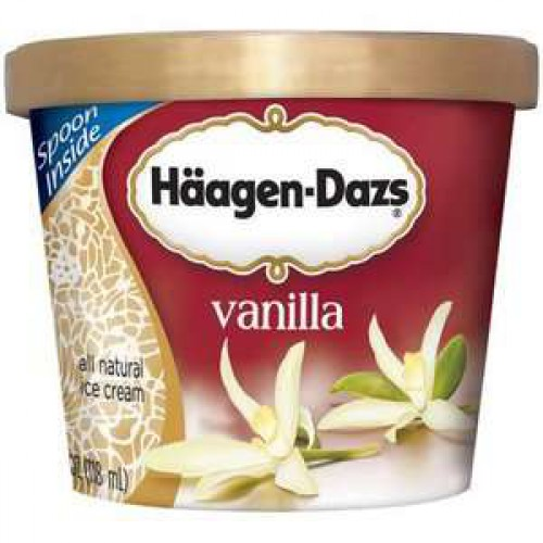 Haagen Dazs Ice Cream (100ml)